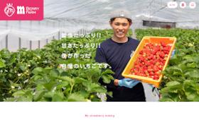 制作実績に岐阜県高山市の「m Berry Farm」様を追加しました。
